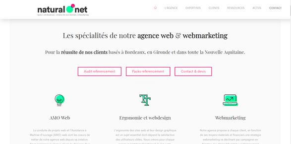 naturalnet parmi les meilleures agences digitales bordelaise
