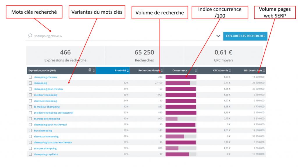 trouver des requêtes principales avec l'interface yooda insight