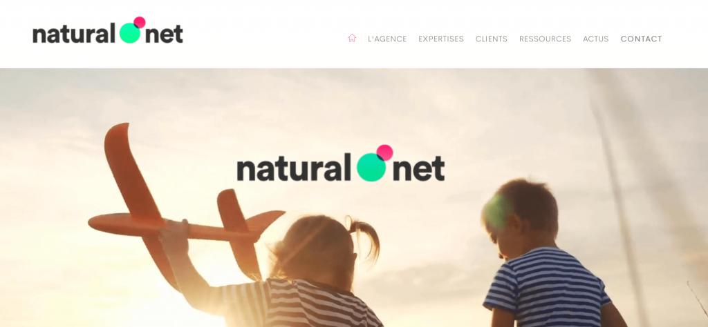 agence natural net stratégie web